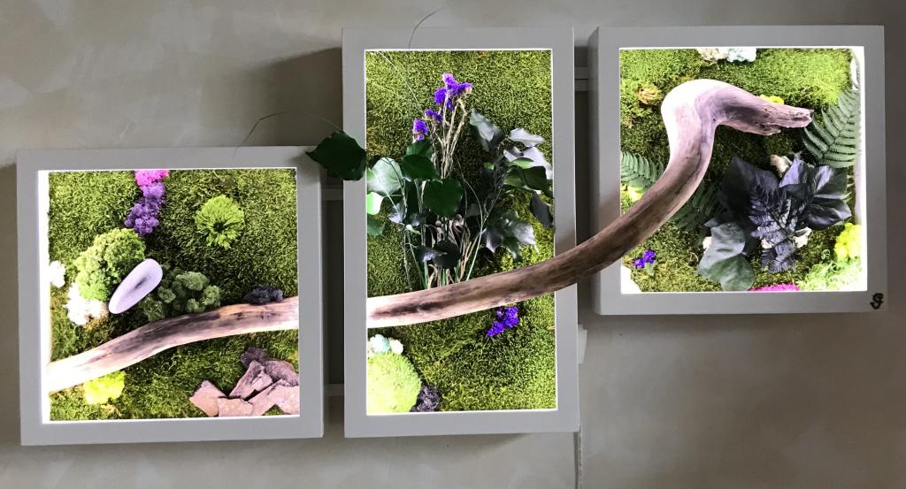 Création d'un cadre végétal à La CHAPELLE MOULIERE - VIENNE - 86