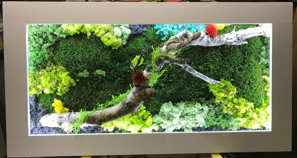 Création de cadres végétaux sur mesure - SAINT JULIEN L'ARS - VIENNE - 86