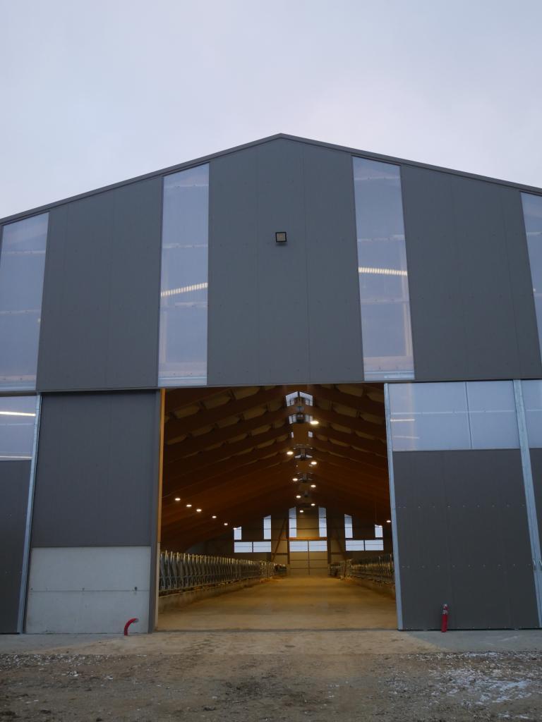 Installation électrique et pose de luminaires LED dans un bâtiment agricole