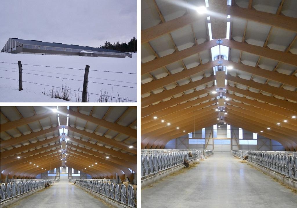 Installation électrique et pose de luminaires LED dans un bâtiment agricole-Lozère (48)